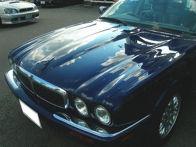 aquamirror-jaguar-1